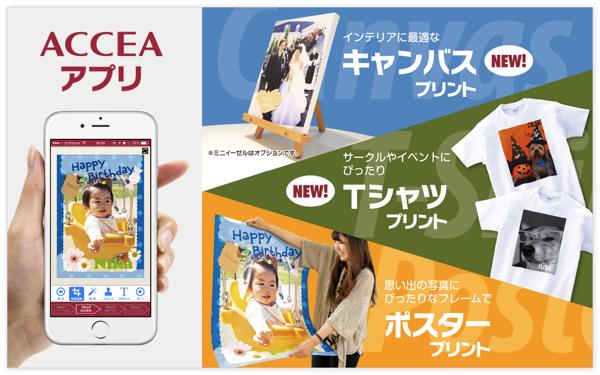 accea_app