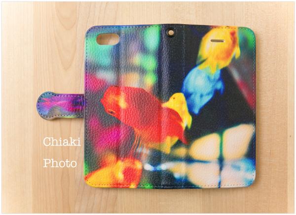 chiaki5121_Rainbow fish1