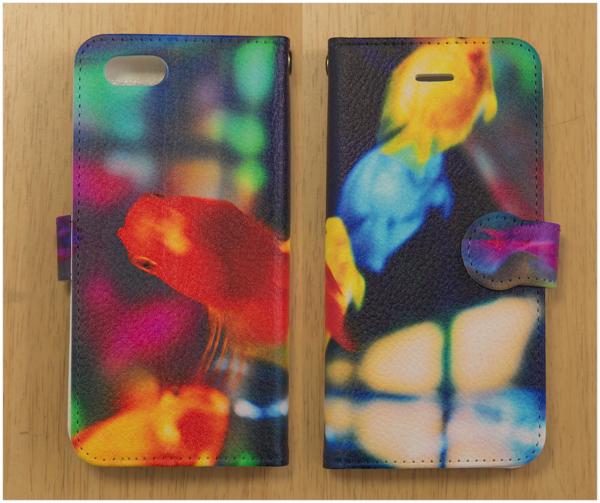chiaki5121_Rainbow fish2