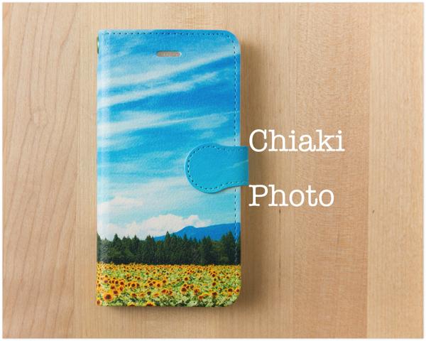 chiaki5121_sunflower1