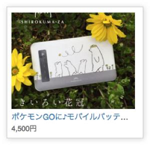 sirokumako01