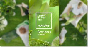 greenrey_pantone